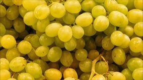 Texture of grapes. In the kitchen stock footage