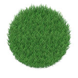 Texture of grass in a circle shape, isolated on white background. Stock Photos