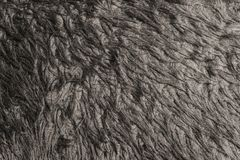 texture gray black woolen surface close Stock Photography