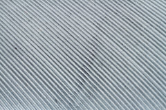 Texture of gray feather with an increase in high-resolution. Texture of feather with an increase in high-resolution stock image