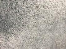 Gray fake fur texture Royalty Free Stock Photo