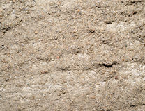 Texture the gray wall in cement Stock Images