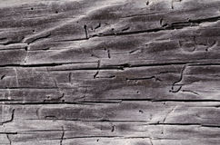 Gray wooden board with holes and cracks Stock Photography