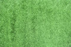 Texture of green grass royalty free stock images