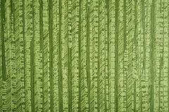 Texture green background paper, strips. Texture green background paper, striped design Stock Photo