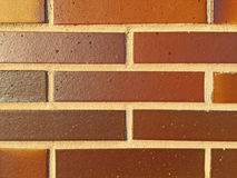 Texture of green bricks Stock Images