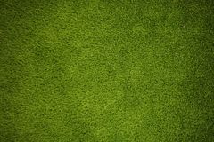 Texture of green grass. Green grass background stock image