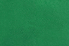 Texture of green leather Stock Image