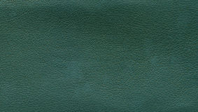 Texture of green leather Royalty Free Stock Image