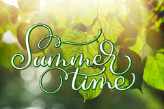 Texture green leaves in summer park with sun background and text Summer time. Calligraphy lettering hand draw.  royalty free stock photography