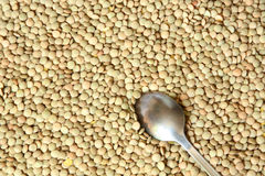 A texture of green lentils. With a spoon Royalty Free Stock Photos