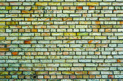 Texture of green multicolored brick Stock Photo