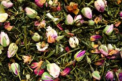 Texture of green tea with rose petals. Dried rosebuds background texture closeup. Food background. Organic healthy. Herbal leaves, detox tea Stock Photos