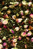 Texture of green tea with rose petals. Dried rosebuds background texture closeup. Food background. Organic healthy. Herbal leaves, detox tea Stock Image