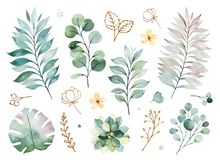 Texture with greens, branch, leaves, yellow flowers, foliage. Watercolor green collection.Texture with greens, branch, leaves, yellow flowers, foliage. Perfect stock illustration