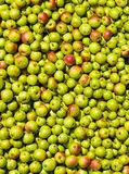 Texture with apples Royalty Free Stock Photos
