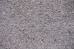 Texture grenue de mur gris rosâtre peint Photographie stock