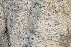 Texture grey concrete. Stock Image