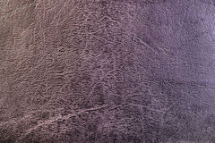 Texture of grey leather Stock Photography