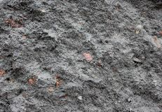 texture of grey stone  background royalty free stock image