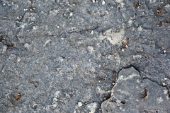 Texture grise de roche Images stock