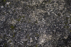 Texture ground. And abstract background stock image