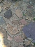 Texture ground in the park like south africa royalty free stock photography