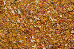 Texture of ground spices. And culinary seasoning Royalty Free Stock Images