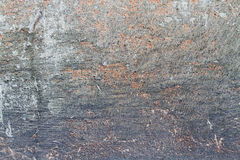 Texture Grunge background wall stucco crack Stock Photography