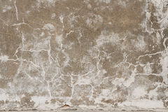 Texture Grunge background wall stucco crack Stock Photo