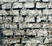Texture grunge de brique Photo libre de droits