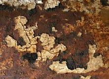 Texture grunge de rouille Photo libre de droits