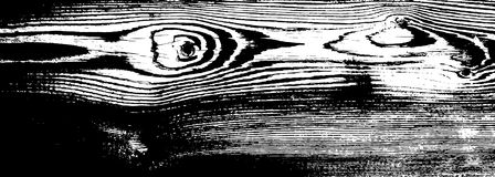 Texture grunge en bois Fond d'isolement en bois naturel Illustration de vecteur Photo libre de droits