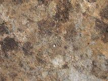 Texture grunge réelle de pierre de roche image libre de droits