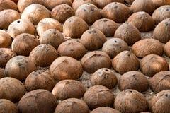 Coconut shell. Texture of half coconut shell royalty free stock photo