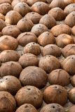 Coconut shell. Texture of half coconut shell stock photography