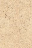 Texture - handmade paper. High resolution background - handmade paper with dried grass texture Stock Photos