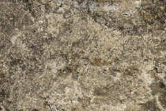 Texture hard stone and rocks with cracks and dirt covered with moss suitable for background Royalty Free Stock Images