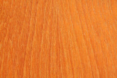 Texture of hard wood. It's a wood wall. Stock Image