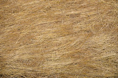 Texture of hay stack in agriculture field Stock Image