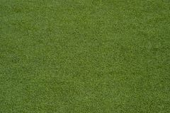 Texture of the herb cover sports field. Used in tennis, golf, ba royalty free stock photo