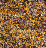 Texture of herbal tea Stock Images