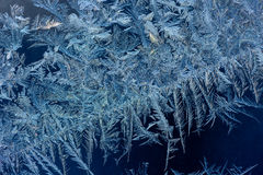 Texture of hoarfrost Royalty Free Stock Image