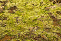 Texture of Icelandic mountains Stock Images