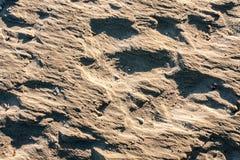 Texture inégale de sable Photos stock