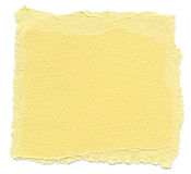 Isolated Fiber Paper Texture - Jasmine XXXXL Stock Photo