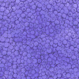 Texture of juicy blueberries Royalty Free Stock Images
