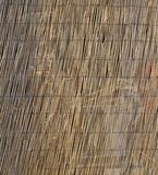 Texture of large bamboo canes entwined with each other Royalty Free Stock Images
