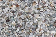 Texture: large sanded gravel. Small white chalk stones. Artistic reliefs from natural objects stock photo