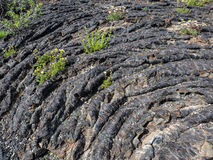 Texture of lava flow. Texture of solid lava rock shows the motion of the flow at Craters of the Moon National Park, Idaho Stock Images